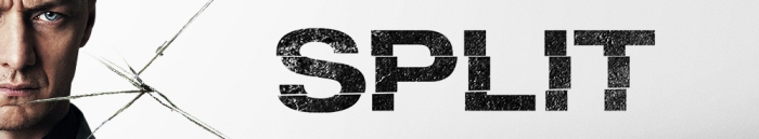 split-58a33d54983da