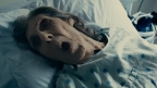 Review – The Taking of Deborah Logan (2014)